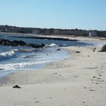 Stroll along Nantucket Sound