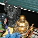 Buddha Band Collection