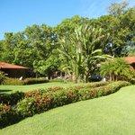 Foto de Hotel Villas Fantasía del Pacifico