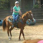 My wife's horse, helmet is optional