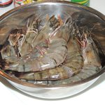 Prawns the size of small lobster tails