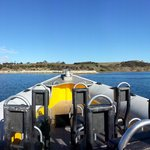 Marine Adventures Boat