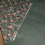 Frayed carpet in hallway