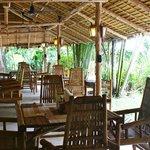 Un lieu paisible pour y déjeuner ou dîner