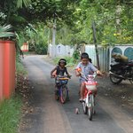 Silent approach road to homestay