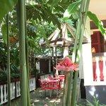 Restaurante Celvas
