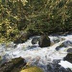 River Creed dans le parc du chateau