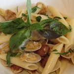 vongole penne