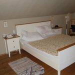 Room 41