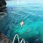 Sea Grape...One Love!!