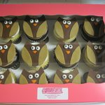 Special order cupcakes.....Owl birthday party