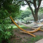 Hammock that was great to relax on
