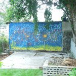 Painted wall in the backyard