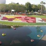 Jardin vu du monorail