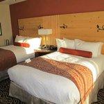 Nice room, comfortable beds.