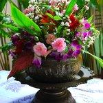 Sabye's Daily Fresh Flowers