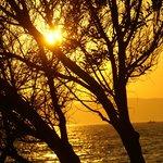 Sonnenuntergang im Garten des Medusa