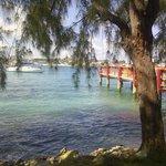 Ashram view to Nassau Harbour