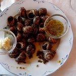 """One of specialities, """"Cargols a la llauna"""" (snales)"""