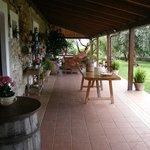 Terrasse, wo normalerweise das Fruehstueck serviert wird