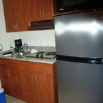 Full sized refrigerator, 2 burner electric stove and small sink in kitchenette.