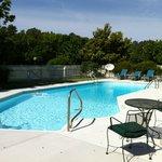 Pool at Huntingfield Creek