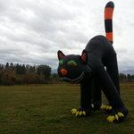 Giant cat!