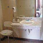 Handicap Bathroom Area