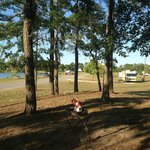 A view of Rocky Hock Campground near Edenton NC