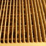 Disgusting air vent in bathroom