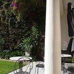 Gardens/patio