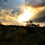 Majestic African sunset whilst on Safari at Bushfellows!