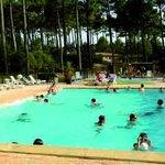 VVF Villages Moliets : piscine