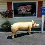 Pig parking.