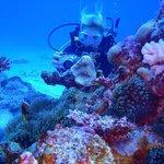 Resort Dive Site