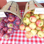 Fresh Fruit Picked at Alyson's Orchard