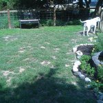 Dog park (on property)