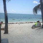 **The Beach**