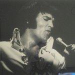 Elvis pix are everywhere!