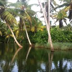near Trivandrum- great boats tour