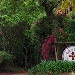 subtropical paradise
