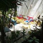 el jardin muy fresco