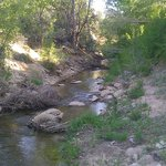 Small stream behind motel, East Fork of the Virgin River I believe