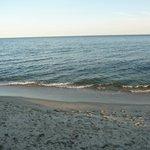 Ocean view in front of bldg