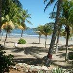 Playa Venetur