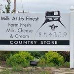 Shatto Dairy