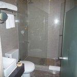 ガラス張りシャワー室湯量はOK