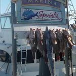 a few fishing trophies shown just after the boat pulls into the harbor