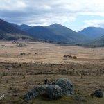 Namdgi National Park - near Yankee Hat