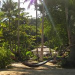 Beach area hammocks